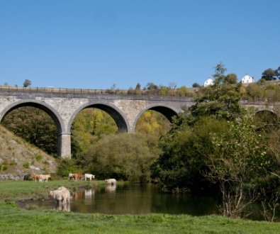 peak-district-viaduct-sheep-grazing